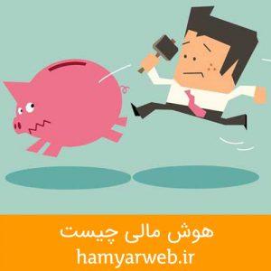 هوش مالی وضعیت مالی